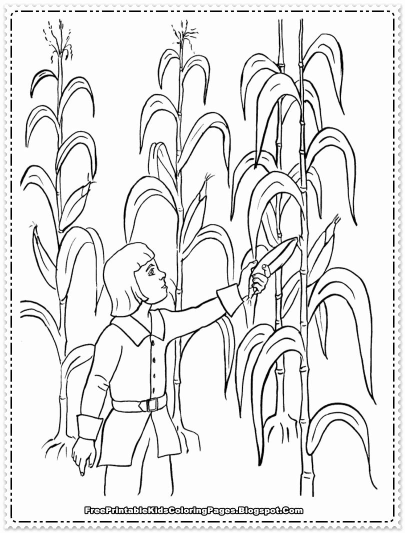 Field Day Coloring Page Best Of Harvesting The Corn Field