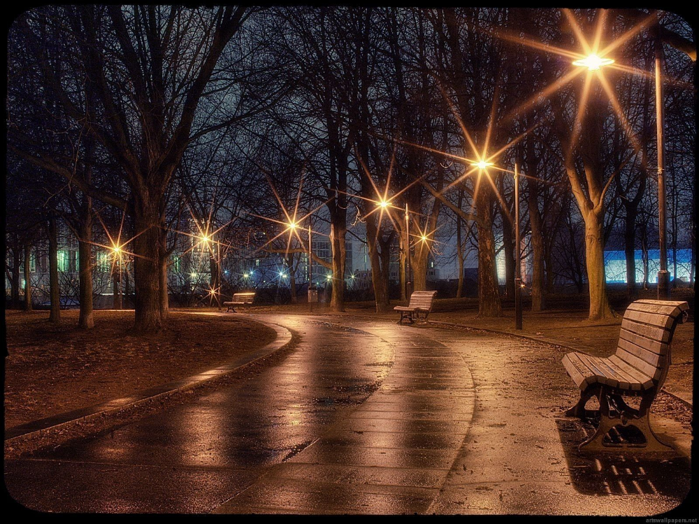 Romantic Winter Night High Res In 2020 Rain Wallpapers Street Light Road