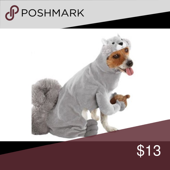 Squirrel dog costume Dog Gray Squirrel Pet Halloween Costume X-Large NWOT. By Target. Chest- 28 -33  Neck- 20 -26  Length (measured from neck to end of ...  sc 1 st  Pinterest & Squirrel dog costume | Pinterest | Squirrel Target and Costumes