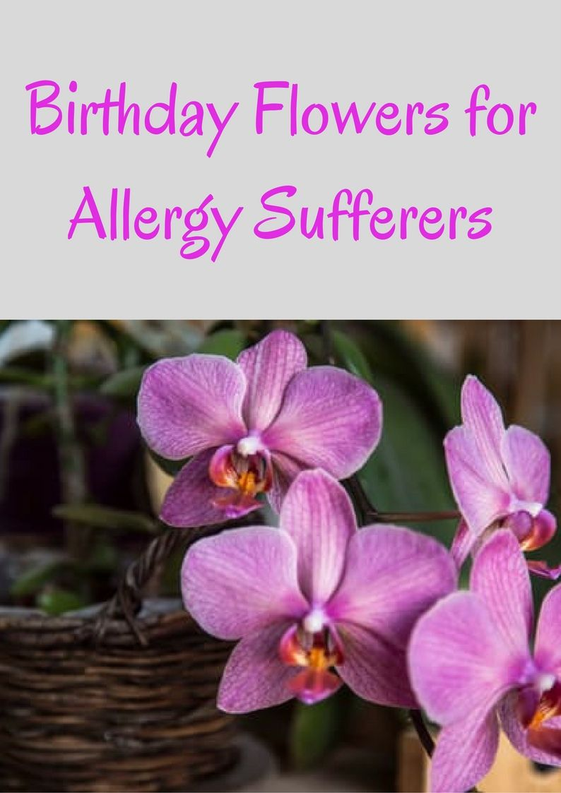 The Best Birthday Flowers To Give As A Treat To An Allergy Sufferer
