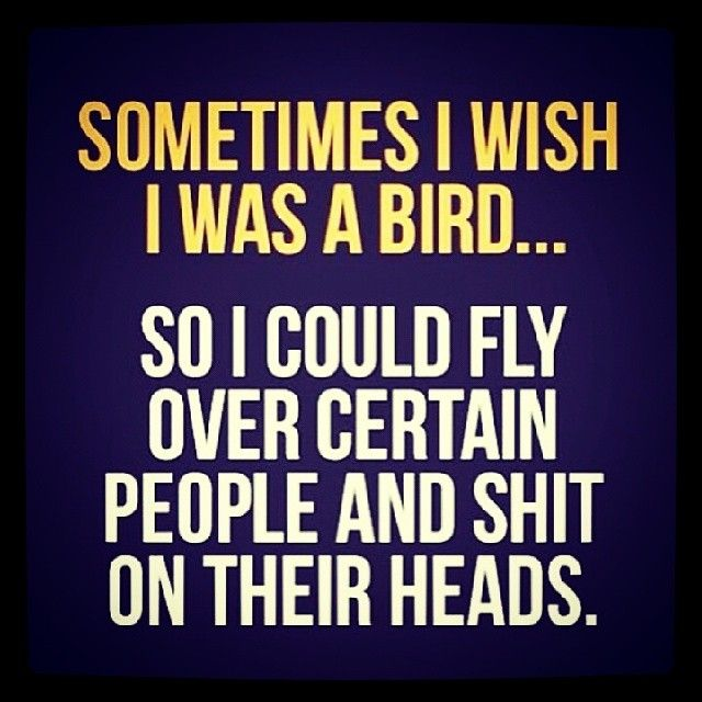 Sometimes I Wish I Was A Bird Life Quotes Quotes Quote Instagram