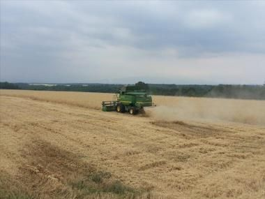 Αγροτικός Οδηγός: ΟΠΕΚΕΠΕ: Αναλυτικές οδηγίες για την ΟΣΔΕ 2015