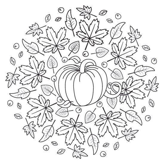 Kurbis Und Herbstblumen Halloween Mandala Zum Drucken In Pdf Und Jpg G Mandalas De Dia De Muerto Mandalas Zum Ausmalen Blumenzeichnung Mandala Ausmalen