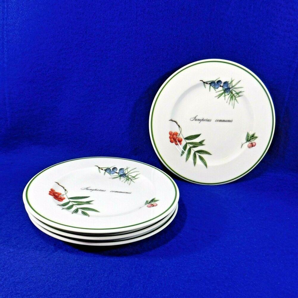 Details About Set Of 4 Apilco Dessert Plates Elysian Gardens Juniperus Communis France 7 5 Dessert Plate Plates Floral Ring Centerpiece