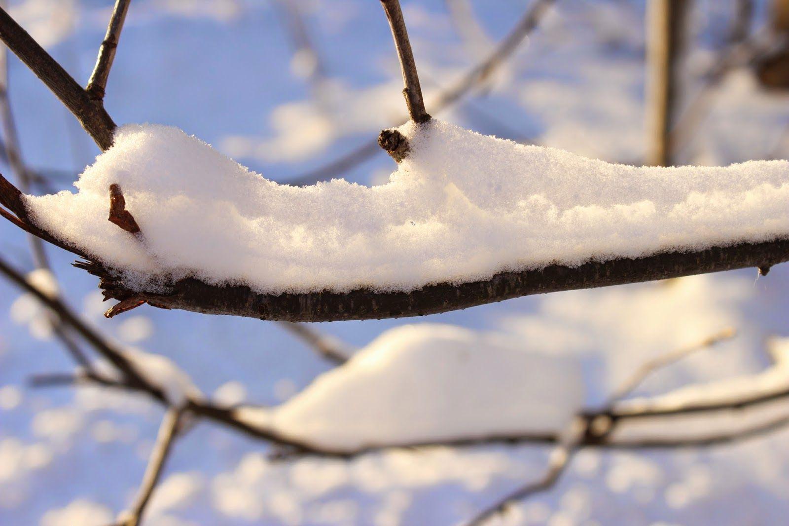 Aurinkoa ja lunta