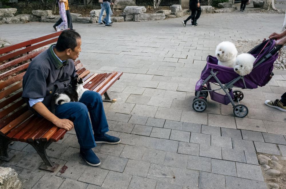 Photographer Spotlight Ryan Harding Old People Photo Essay Projects On Elderly