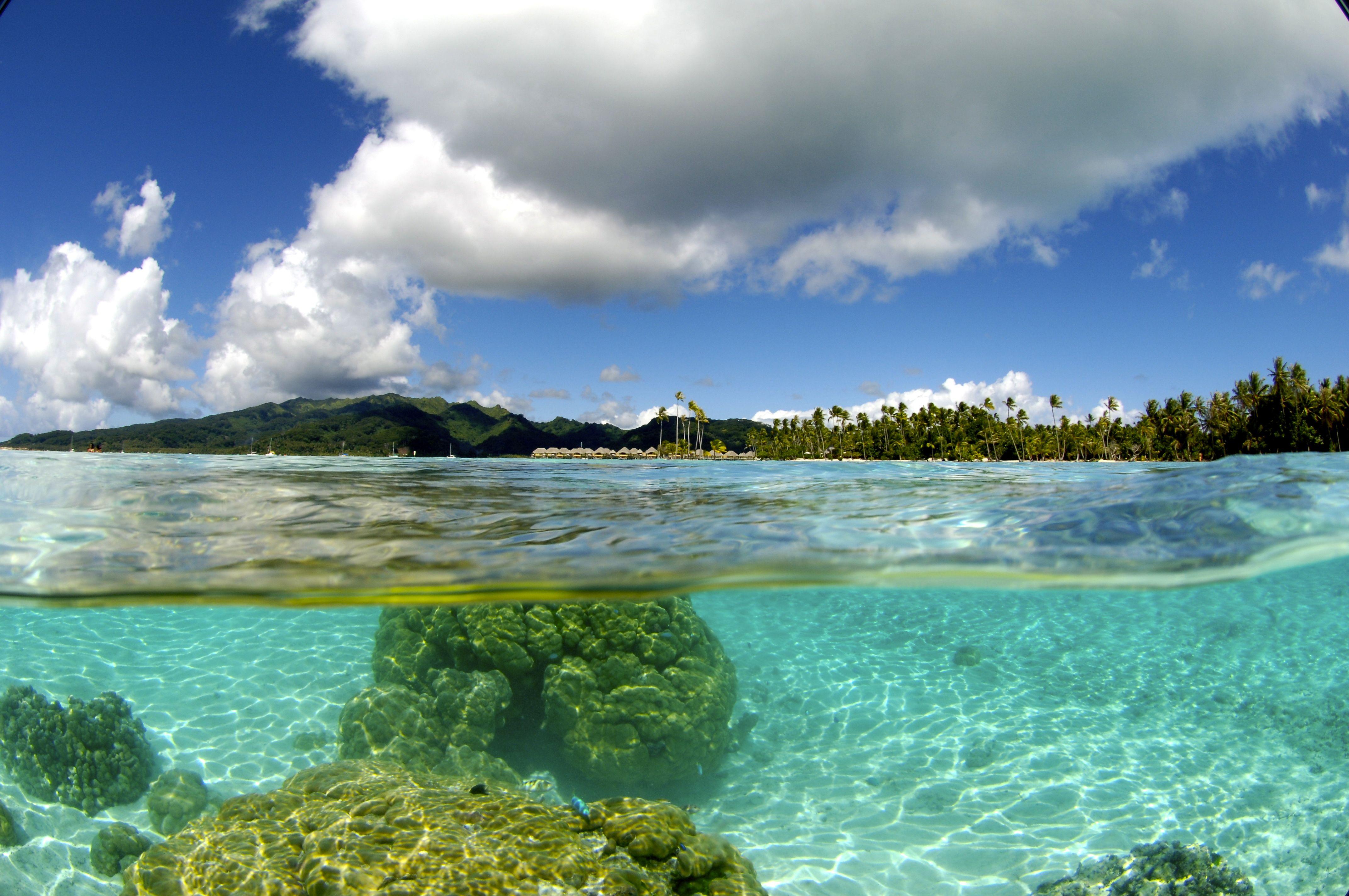 Paysage De Polynesie Francaise Photo Tahiti Outdoor
