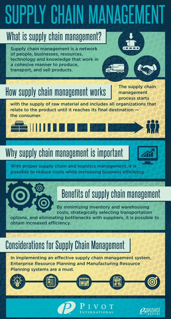 supply chain management infographic