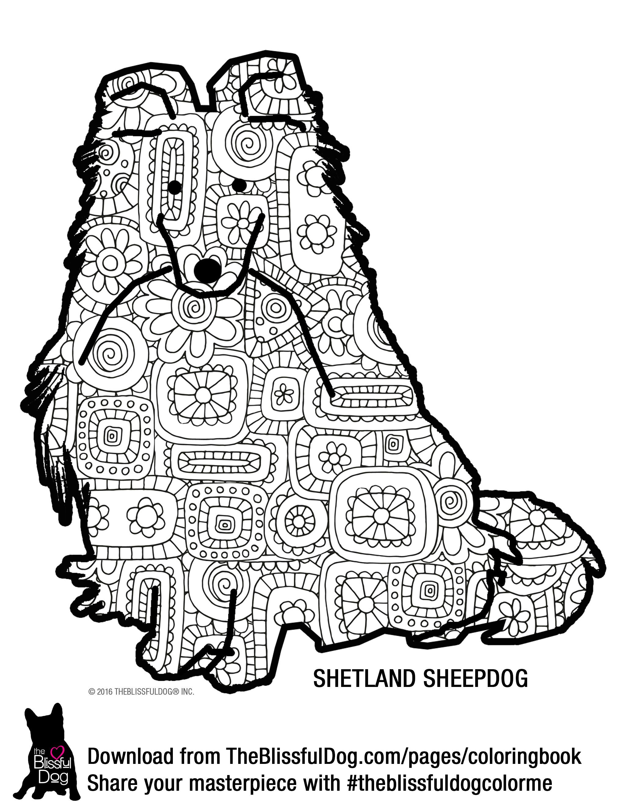 Coloring Book Dog Coloring Page Shetland Sheepdog Coloring Books