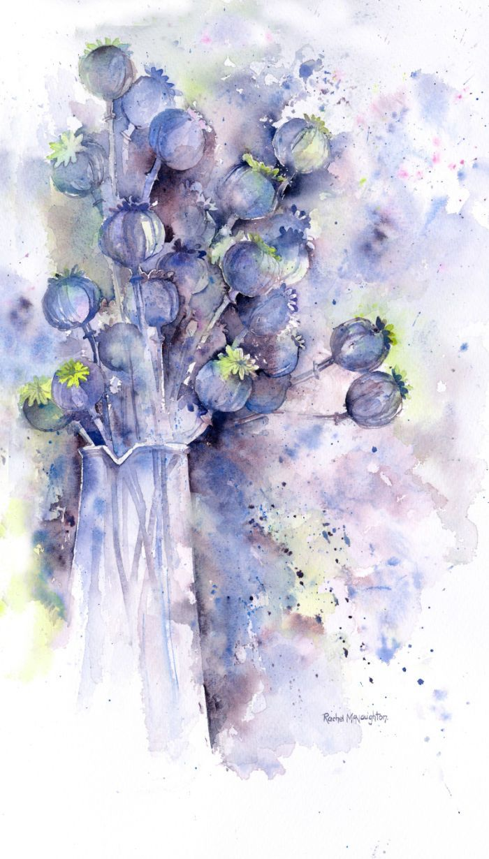 Rachel Mcnaughton - Poppy Seedheads Jug
