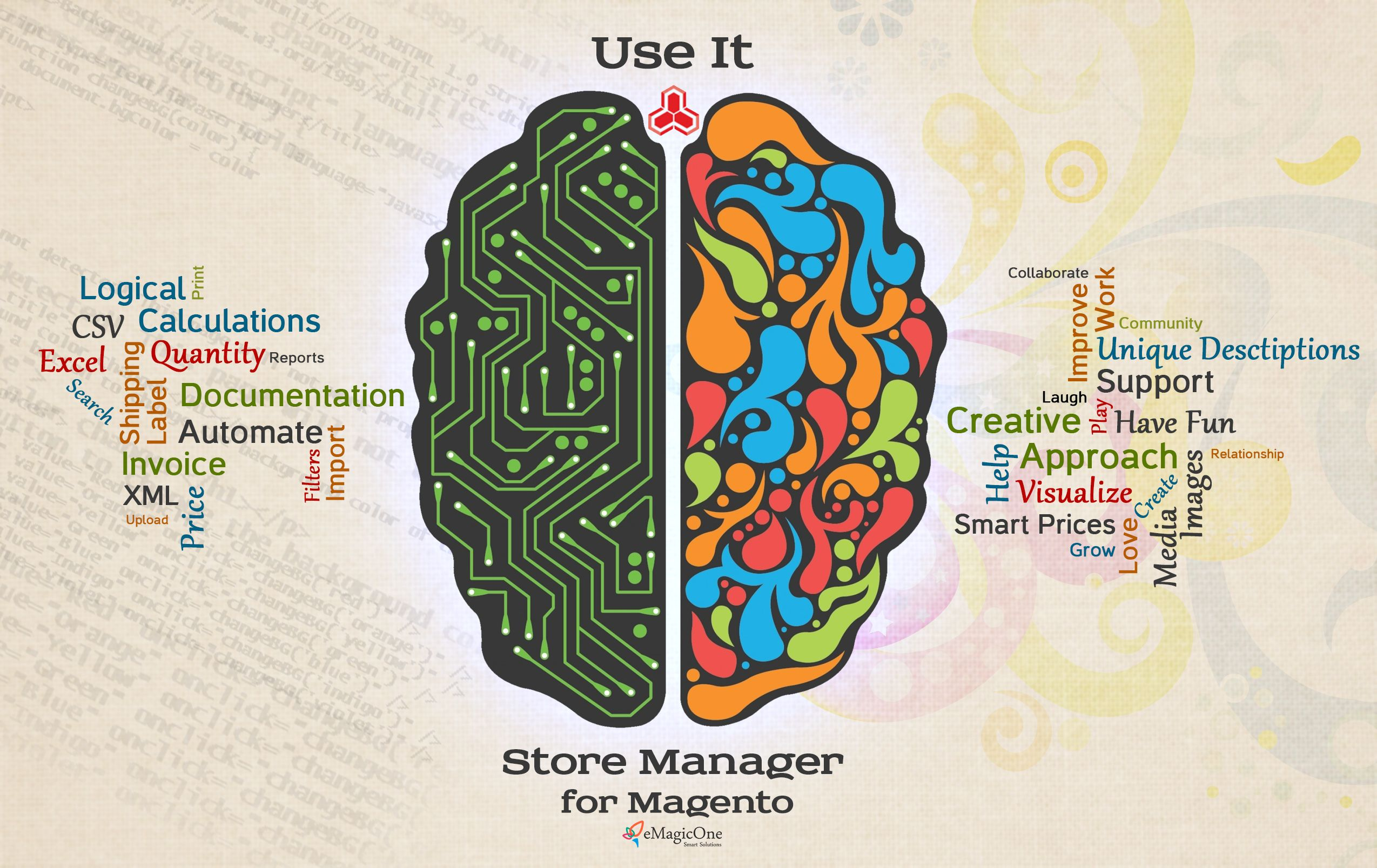 Magento dual brain theory claims that every webshop owner who puts ...