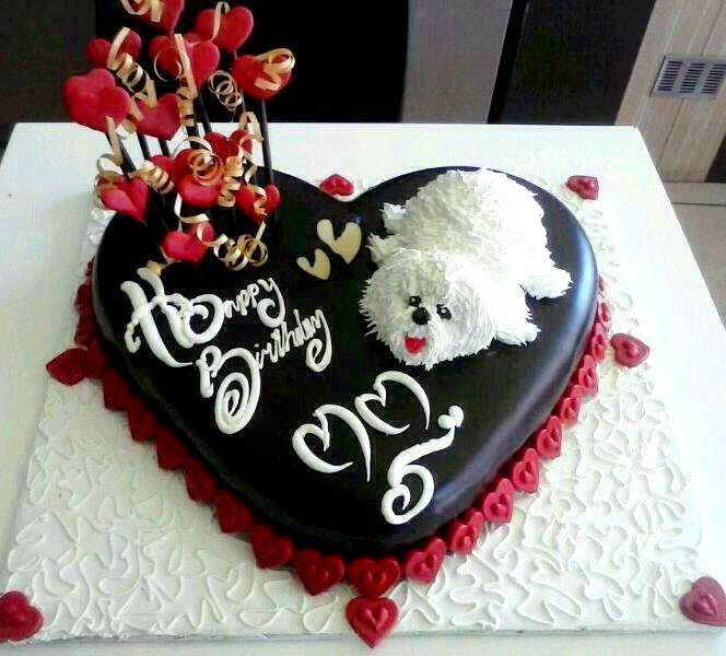 Birth Day Cake for a pet lover.