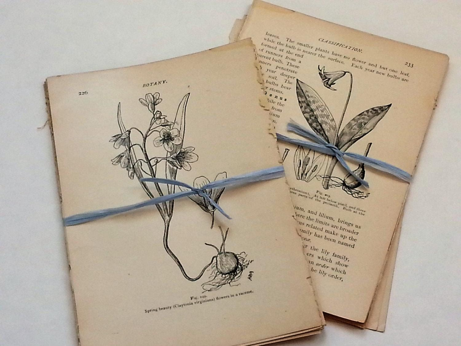 Pin On Handbound Books Journals And Paper Folding