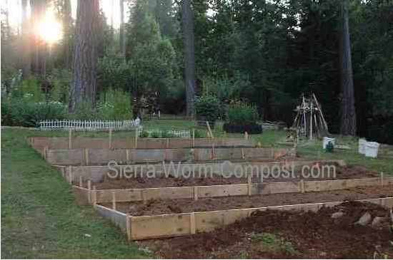sloped vegetable garden Garden Layout to Maximize Gardening