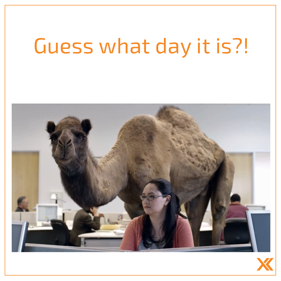 Let S Celebrate Humpday By Coming To Xperience Fitness