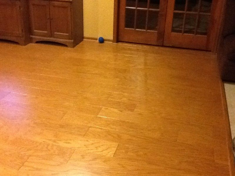 Carpet Removal And Hardwood Floor Buffing Westfield Monks Home