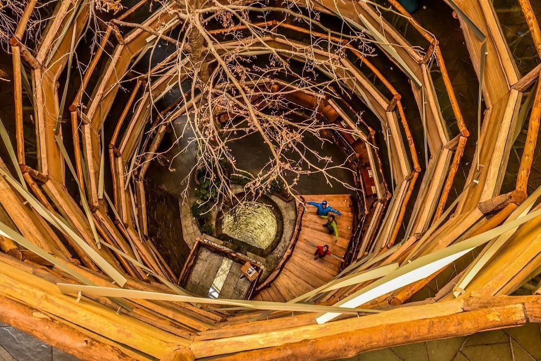 Los bosques de la Reserva Biológica Huilo Huilo esconden la Montaña Mágica Lodge un hotel de lujo totalmente integrado en su entorno que simula ser una montaña más de esta vasta reserva - #huilohuilo #reservabiologicahuilohuilo #mochileros #chile #moucat #felicidad #viajefeliz #destinosudamerica #latinoamerica #ig_latinoamerica_ #passionpassport #travelawesome #earth_deluxe #discoversouthamerica #patagonia #patagoniachilena #igerspatagonia #nature_seekers #iamtb #chilegram #ig_chile…