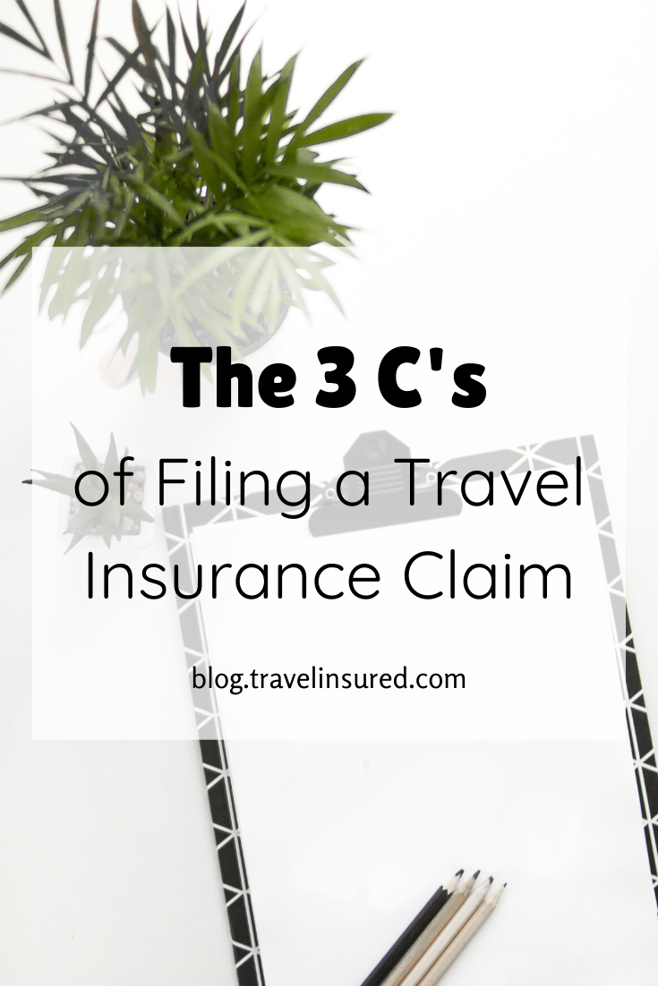Pin On Travel Insurance