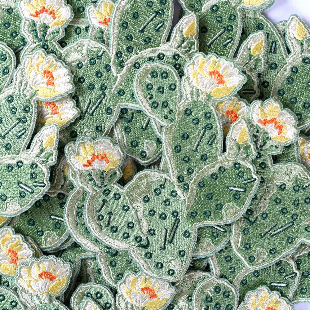 Prickly Pear Cactus Patch Cactus Flower Cactus Patch Cactus