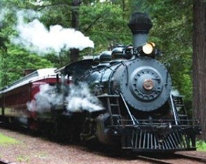 Northspur Scenic Train Ride For Two