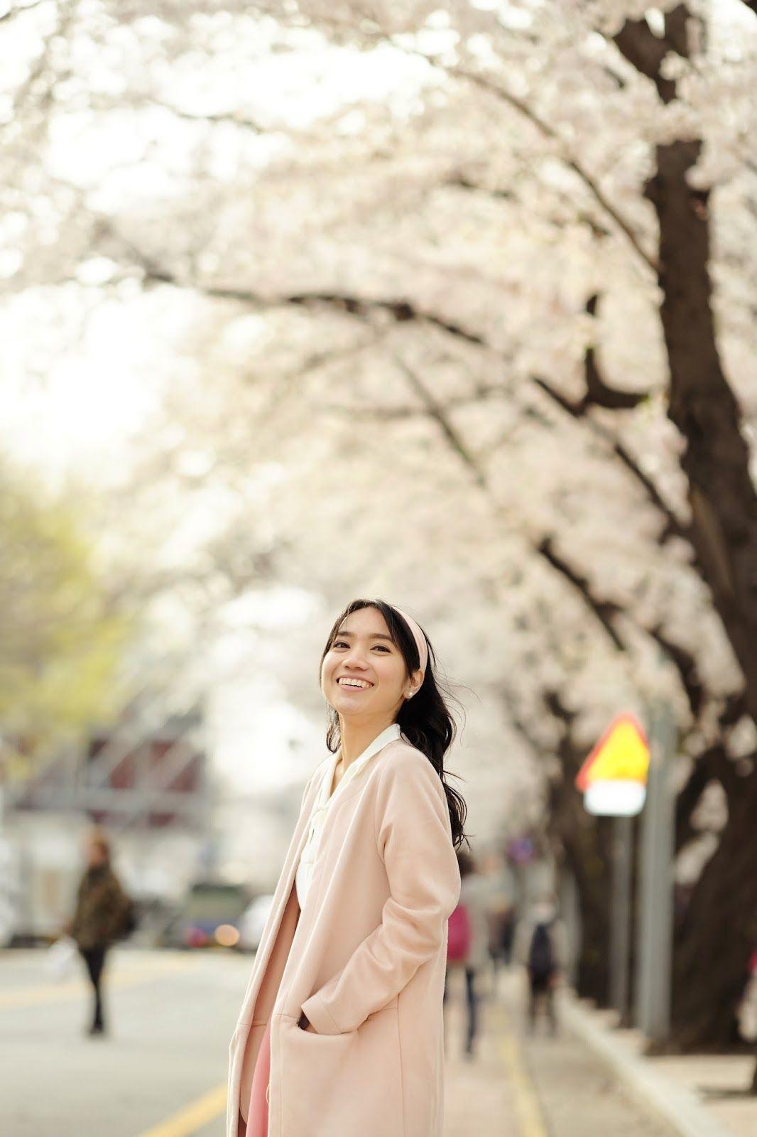 Cherry Blossoms Korea 2020 A Forecast Guide Where To Go Beautiful Places South Korea Travel Cherry Blossom