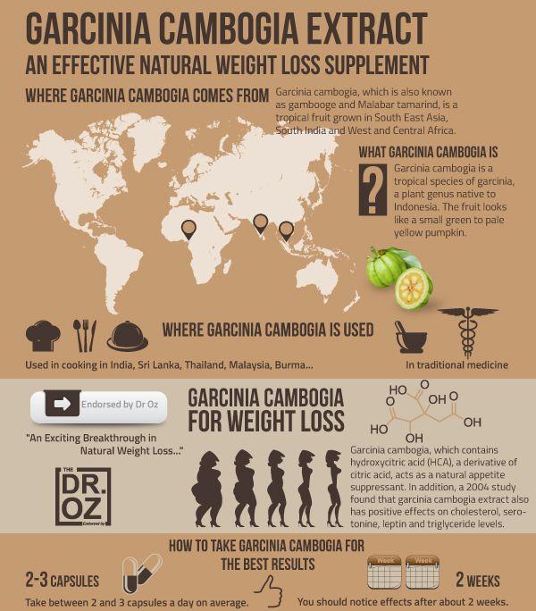 sundt vægttab med garcinia cambogia - http://howtolosepounds-fast.com/