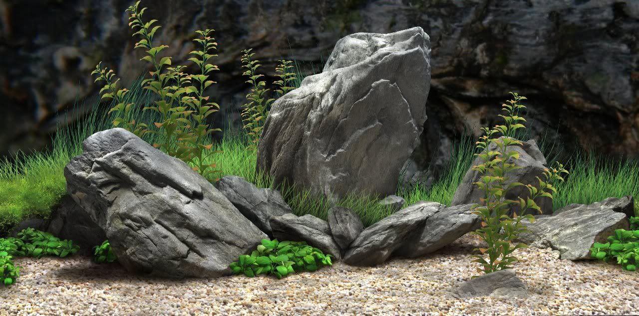 Pin by dheeraj puri on tgtgt pinterest aquariums fish for Landscaping rocks for aquarium