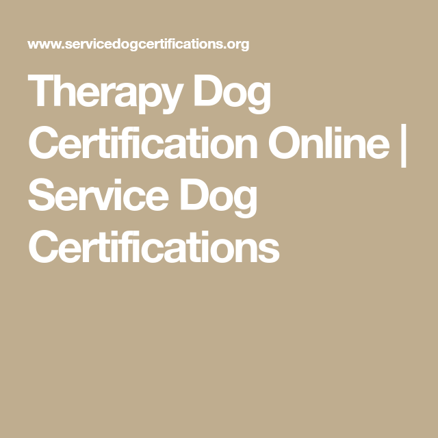therapy dog certification online | service dog certifications | dogs ...