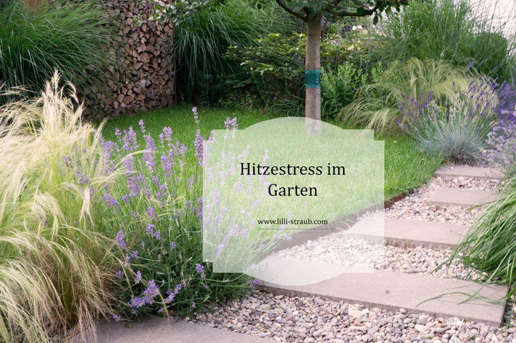 Gratis Gartentipps Lilli Straub Den Traumgarten Planen Traumgarten Garten Garten Planen