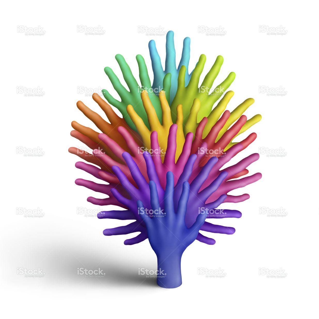 Радуга дерево | Радуга, Цветы и Фотографии