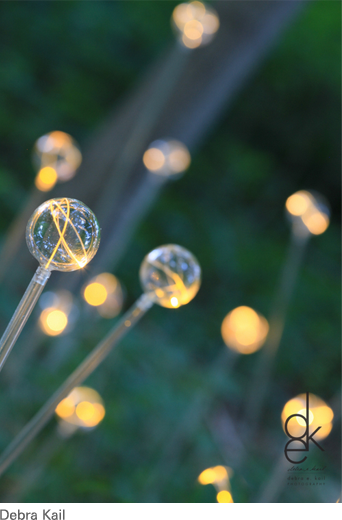 Light at Longwood Gardens  installation by Bruce Munro
