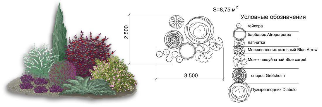 Схемы композиций в саду