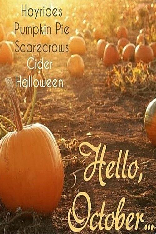 293 Best Fall (September, October U0026 November) Images On Pinterest   500x749