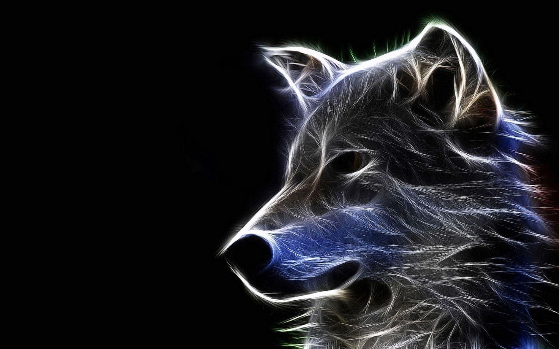 Cool Hd Wallpapers Wolf Cool Hd Wallpapers Wolf Wolf Wallpapers Wolf Wallpaper Wallpaper Wolf