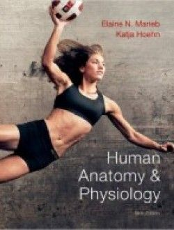 Human anatomy physiology 9th edition pdf download httpwww human anatomy physiology 9th edition pdf download httpaazeabookhuman anatomy physiology 9th edition fandeluxe Image collections