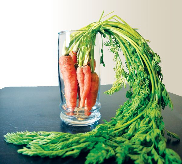 Virtually every health authority recommends eating 6-8 servings of vegetables and fruits every day, but the truth is, very few of us actually get that. Why? Some dislike the taste, preparation can be time-consuming, and trying to eat on the run is tough. Nonetheless, the concern for health and maybe shedding a few pounds this year might be your focus. The solution is juicing.