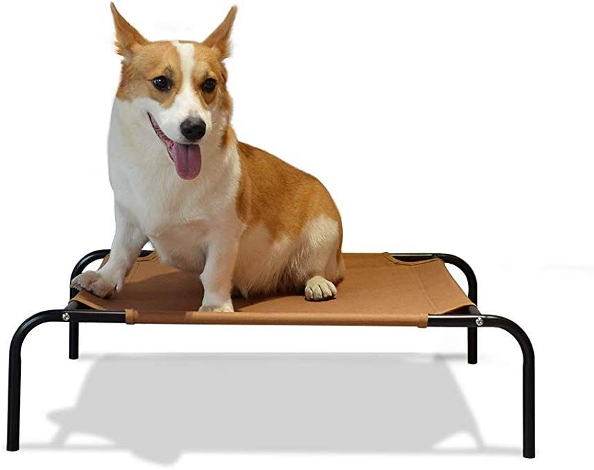 Neala Elevated Cot Bed For Cats And Dogs Portable Cooling Washable