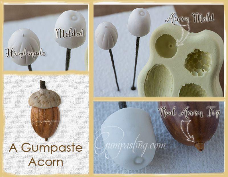 {Examples of Molded & Handmade Gumpaste Acorns}
