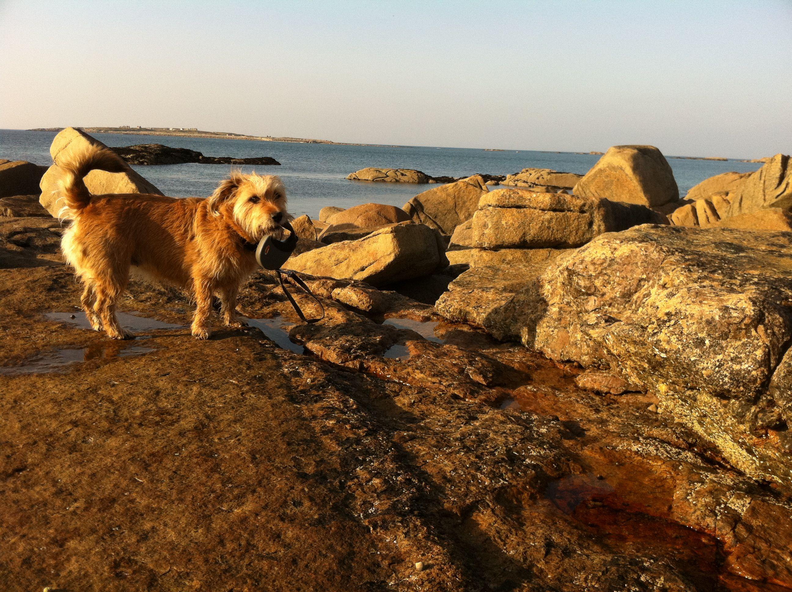 Glassagh beach, Gweedore
