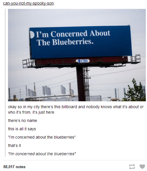 PERCY!!!!!!! WHAT ARE YOU DOING MAKING BILL BOARDS??????? WHY ARE YOU CONCERNED ABOUT BLUEBERRIES?????