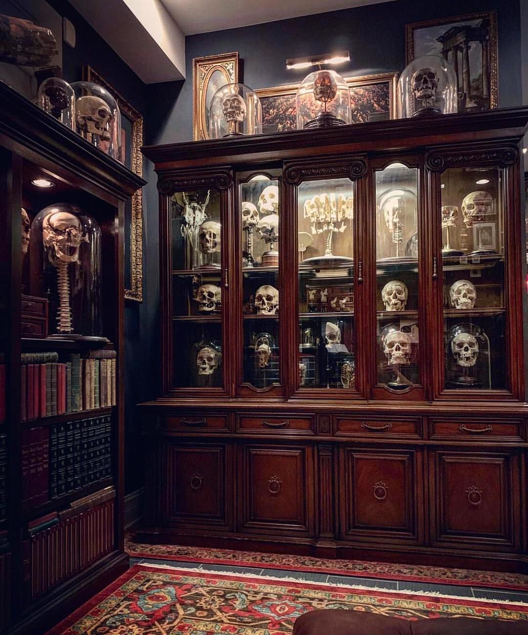 260 best images about Halloween - Macabre Decor on ... |Macabre Interiors
