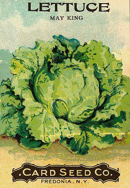 Sisters Warehouse: Free Seeds Vegetable Labels