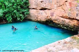 Yankari Game Reserve Game Reserve Favorite Vacation Tourism