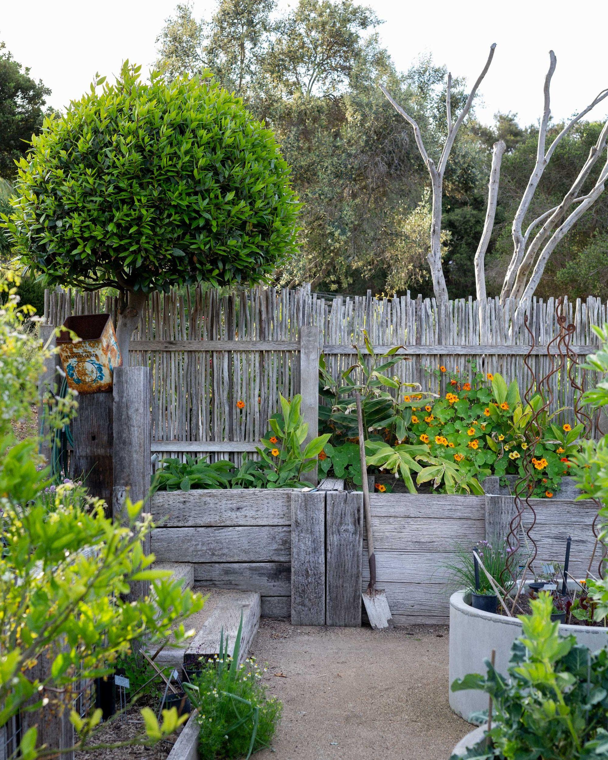 Fiona Brockhoff's Sublime Garden Wonderland Australian
