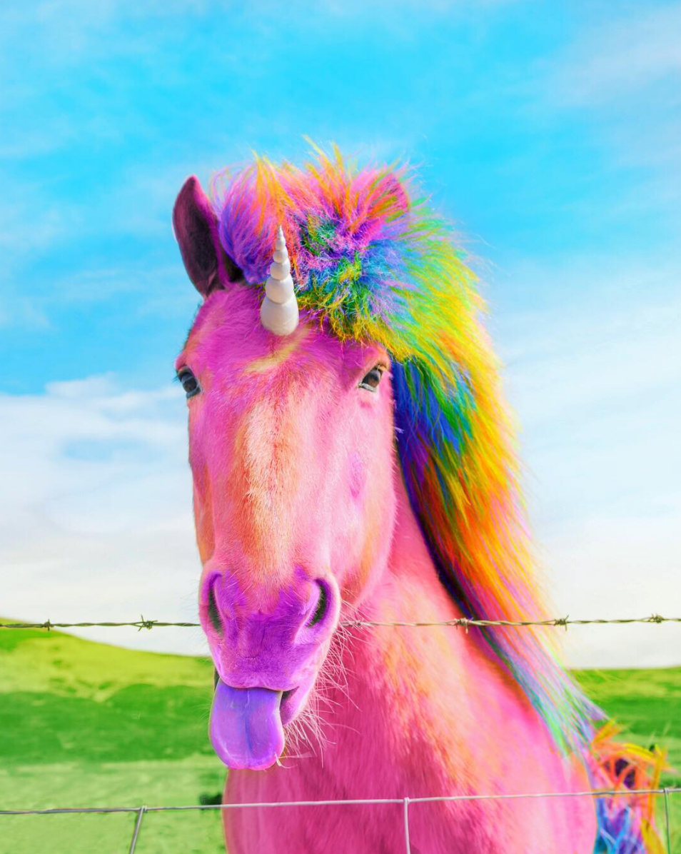 Rainbow Unicorn By Instagram User Spam Ram With Images Cute