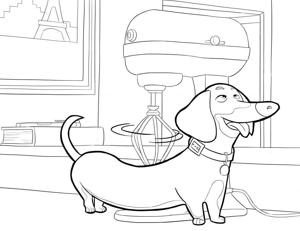 The Secret Life Of Pets Coloring Pages Coloring Pages Secret