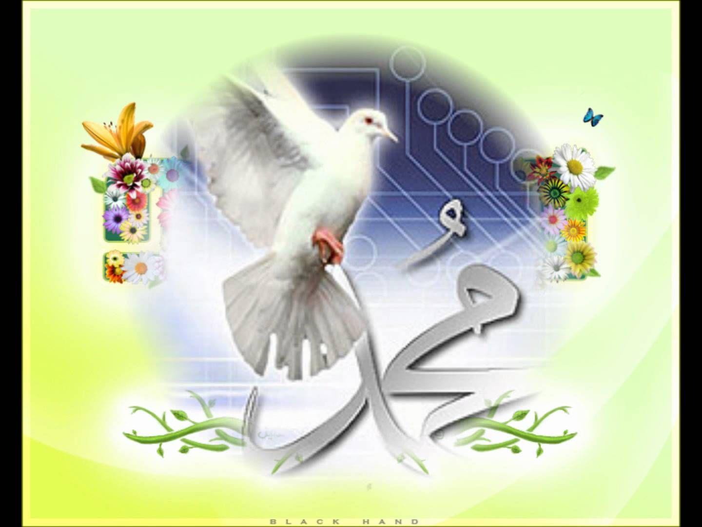 صلو صلو صلاتين على الهادي نور العين Mohammed Beloved Beliefs