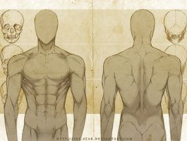 MALE ANATOMY: FRONT + BACK STUDY+ by ~jinx-star on