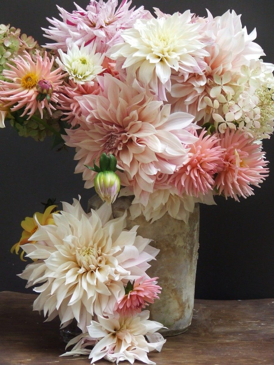 Speaking My French Country Home Beautiful Flower Arrangements Pretty Flowers Beautiful Flowers