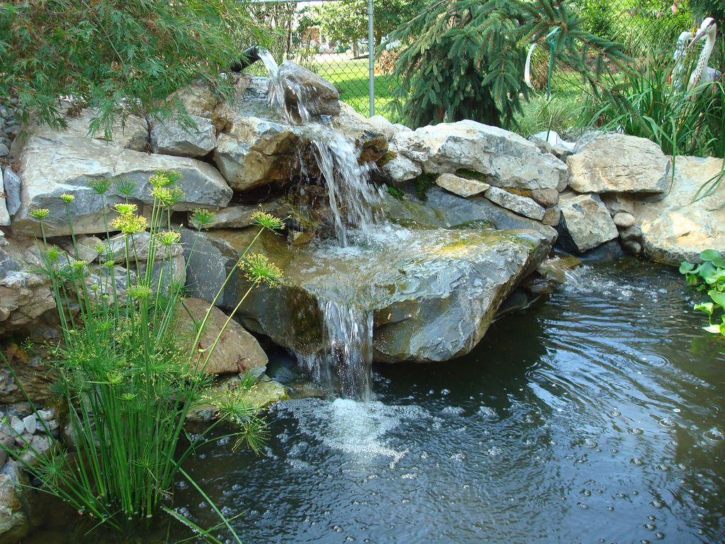 Pin by kat martin on koi ponds above ground pond ponds for Above ground koi pond design
